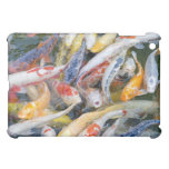Japan, Tokyo, close-up swimming fish Cover For The iPad Mini