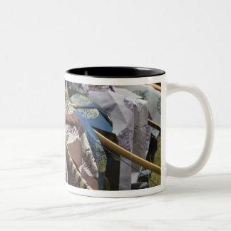 Japan, Tokyo, Meiji Shrine, Momteshiki Two-Tone Coffee Mug