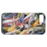 Japan, Tokyo, Nahaufnahmeschwimmenfisch iPhone SE/5/5s Case