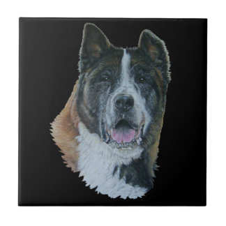 Japanese/American akita dog portrait black tile