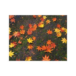 Japanese Autumn Maple Leaves Wall Canvas Print