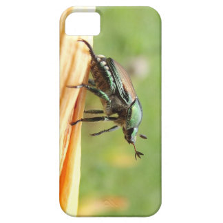 Japanese Beetle iPhone 5 Cases