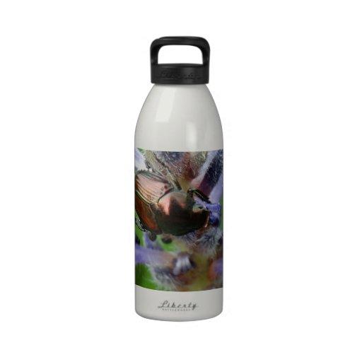 Japanese Beetle on Purple Arrowhead flower Reusable Water Bottles