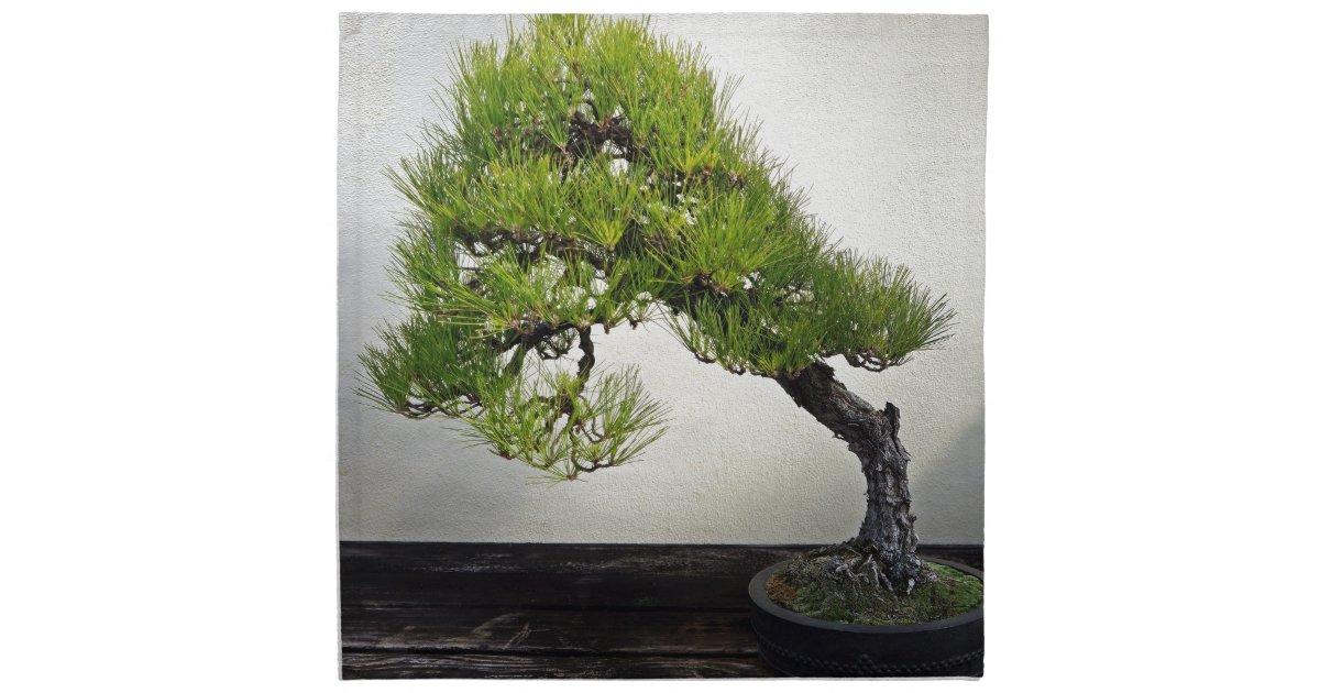 Japanese Black Pine Bonsai Cloth Napkin Zazzle Com