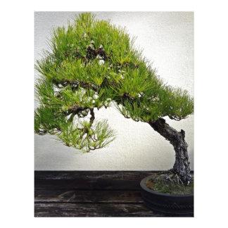 Japanese Black Pine Bonsai Letterhead Design