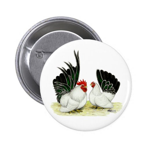 Japanese Blacktail Bantams 2 Inch Round Button