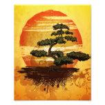 Japanese Bonsai Tree Sunset Photo Print