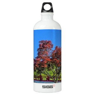 Japanese Bridge Water Bottle