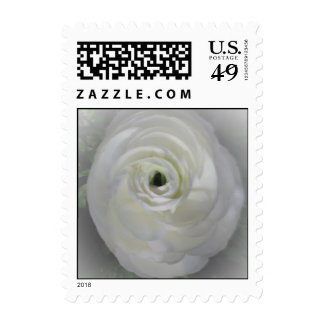 Japanese Camelia Postage Stamps