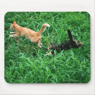 Japanese Cat 3 Mouse Pad