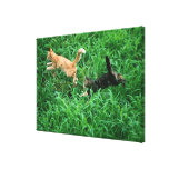 Japanese Cat 3 Stretched Canvas Print