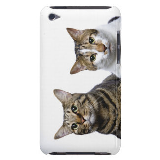 Japanese cat and Manx cat on white background Barely There iPod Covers