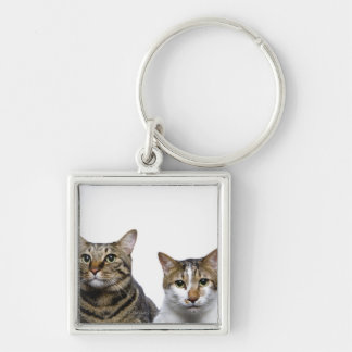 Japanese cat and Manx cat on white background Silver-Colored Square Keychain