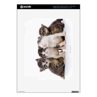 Japanese cat iPad 3 decal