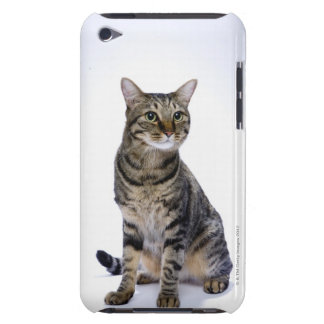 Japanese cat on white background iPod touch cover