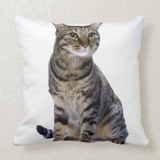 Japanese cat on white background throw pillows