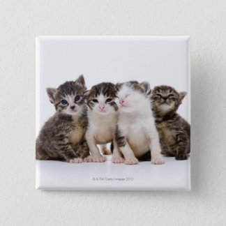 Japanese cat pinback button
