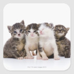 Japanese cat square stickers