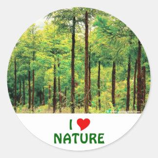 Japanese Cedar woods Classic Round Sticker