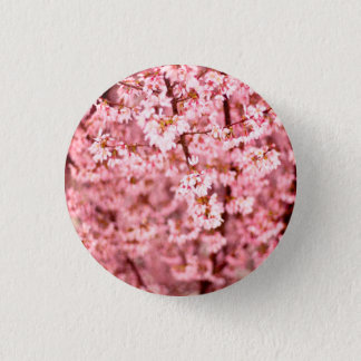 Japanese Cherry Blooms Pinback Button