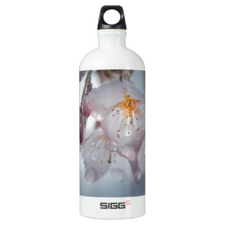 Japanese Cherry Blossom after the rains Aluminum Water Bottle