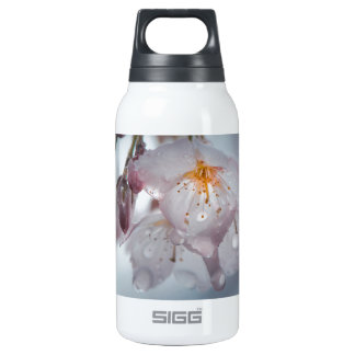 Japanese Cherry Blossom after the rains Insulated Water Bottle