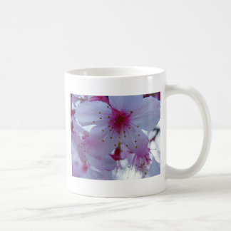 Japanese Cherry Blossom Coffee Mug