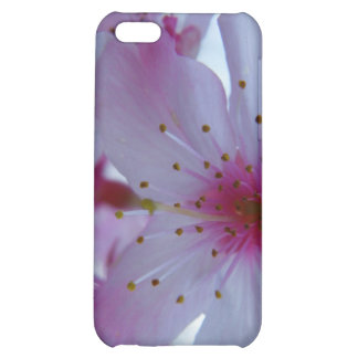 Japanese Cherry Blossom Cover For iPhone 5C