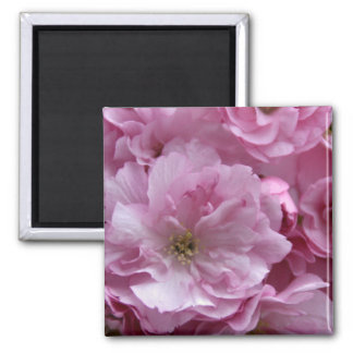 Japanese cherry blossom fridge magnets