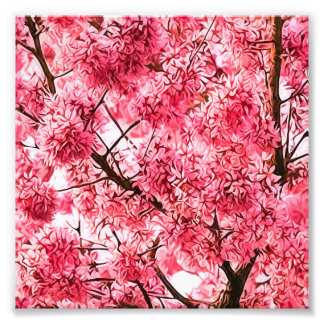 Japanese Cherry Blossom Tree (2013) Art Photo