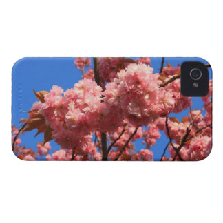 japanese cherry blossoms iPhone 4 cases
