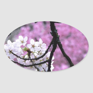 Japanese Cherry Blossoms Oval Sticker