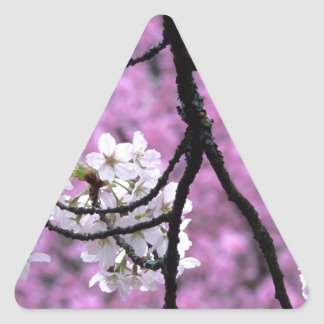 Japanese Cherry Blossoms Triangle Sticker
