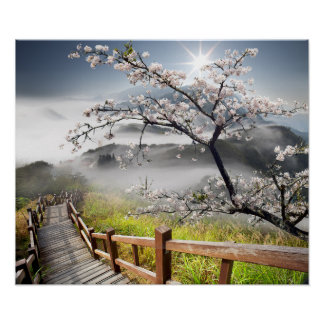 Japanese Cherry Landscape Poster