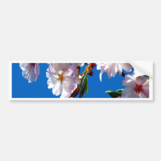 japanese cherry peace and beauty bumper sticker