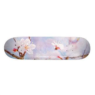 Japanese Cherry - Sakura In Bloom Skateboard Decks