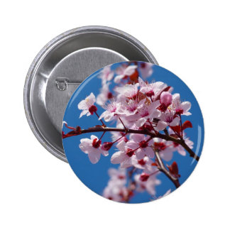 Japanese Cherry Tree Blossom Pinback Buttons
