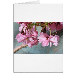Japanese cherry tree blossom card