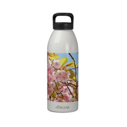 Japanese cherry tree blossom water bottle