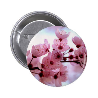 Japanese Cherry Tree Blossoms Buttons