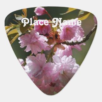 Japanese Cherry Tree Pick