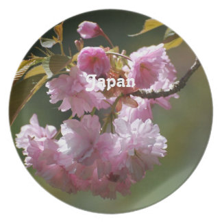 Japanese Cherry Tree Party Plate
