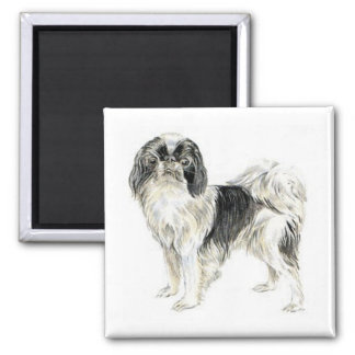 Japanese Chin 2 Inch Square Magnet
