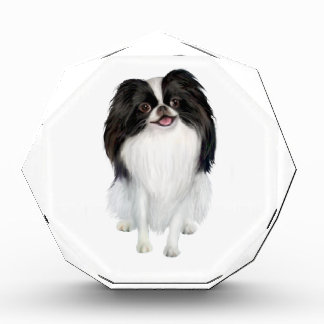 Japanese Chin A - Black and white Awards