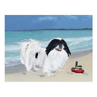 Japanese Chin at the Beach Postcard