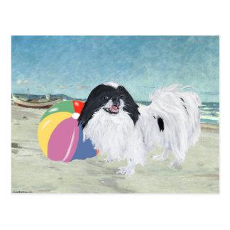 Japanese Chin Beach Ball Postcard
