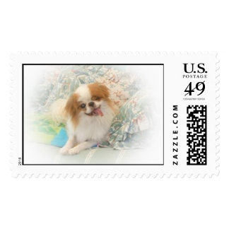 Japanese Chin Boy Stamps