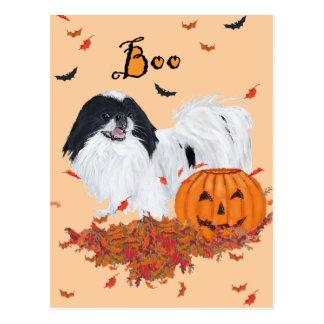 Japanese Chin Halloween Postcard