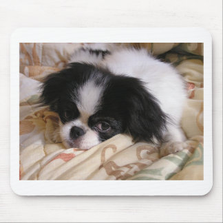 Japanese_chin puppy.png mouse pad