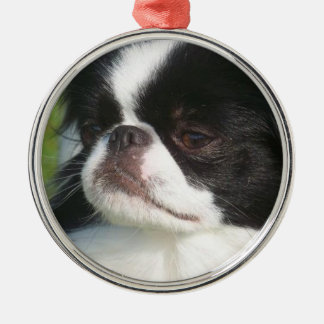 """Japanese Chin """"Wiggles"""" ornament"""